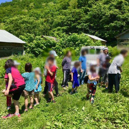 農業体験イベント in滝下農園